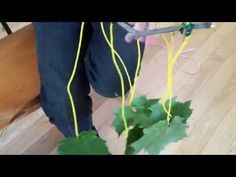 Makey Makey - Electronic Nature Art - YouTube