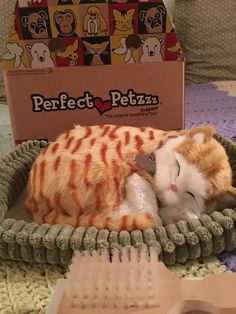 Perfect Petzzz Orange Tabby Soft Toy, a kitty companion you can pet and brush — and even watch it breathe. | 10 Life-Changing Things To Try In 2017
