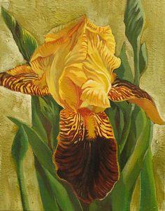 Alfred Ng (b.1955) — Yellow Iris, 2008  (547x700)