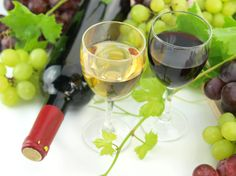 SUSTAINABLE WINEMAKING: 5 WAYS WINE IS GOING GREEN #city #cellar #wine #quality #experience explore citywinecellar.com