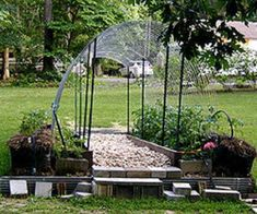 43 Budget-Friendly DIY Greenhouse Ideas | Balcony Garden Web