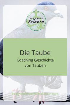 #Taube #Coaching
