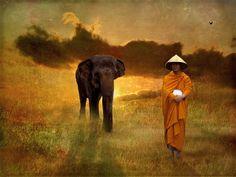 7 Best Le Zen images   Meditation, Zen, Transcendental meditation