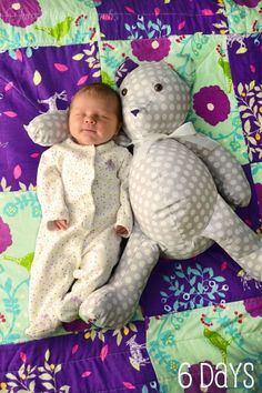 10 Tips For Monthly Baby Photos   Two Happy Lambs