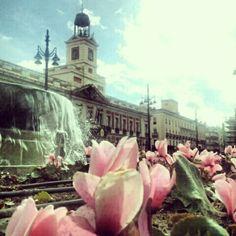 Madrid: Puerta del Sol, Madrid Guarda le Offerte.