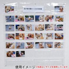 フォトアルバム 万丈 写真展示用ホルダー はがきサイズ A210010 Photo Wall, Frame, Products, Decor, Picture Frame, Photograph, Decoration, Decorating, Frames