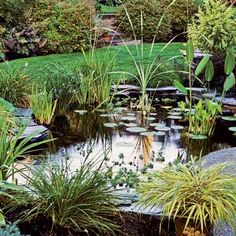 Everything You Need to Know to Build the Perfect Backyard Pond Want to introduce an attractive new dimension to your landscape? Just add water. The experts at This Old House explain what it takes to create a handsome, thriving aquatic centerpiece for your backyard