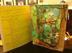 Mrs. Jahnig's Art Room: 3rd Grade EcoSystem and Tunnel Book