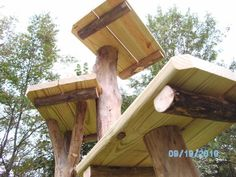 katzentreppe katzenleiter aus douglasie massivholz f r balkon 206 cm 5 stufen. Black Bedroom Furniture Sets. Home Design Ideas