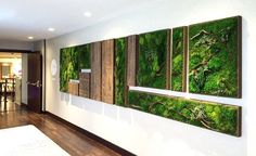 Botanical Wall Art Brings the Self-Sustaining Beauty of Nature Indoors I would want these in my house or I want to try and build and plant them myself.I would want these in my house or I want to try and build and plant them myself. Deco Spa, Island Moos, Wall Design, House Design, Moss Decor, Growing Moss, Moss Plant, Moss Wall Art, Moss Garden
