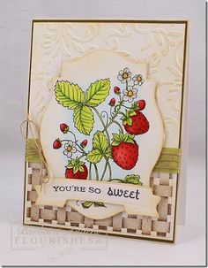 It is another Flourishes Friday Focus. Today The ladies focused on two sets: Strawberries & Basketweave.  Barbara Anders created this wonderful card. For her card she stamped the Basketweave image on some Classic Ivory card. Another piece of Classic Ivory was embossed & inked with  Antique Linen Distress for some highlighting. She stamped the large image from Strawberries on some Classic White card stock & colored with Copic Collections: Iced Aqua, Poppy, Warm Neutrals, New Leaves…