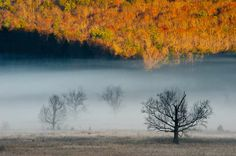 Bill Lea Photography - Cades Cove GSMNP Photo Number _AAM5633