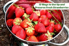 Strawberries hitting the stores is like the kick-off to spring. The first {affordable and in-season} round usually shows up around late March/early April {mostly from California}. If you have your own strawberry patch, you'll have to wait a bit longer...