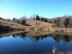 Heath Detweiler's property for sale in Morgan County, Heath Detweiler, Acreage Investments, Inc Land For Sale, Property For Sale, Investing, Water, Photos, Outdoor, Beautiful, Gripe Water, Outdoors