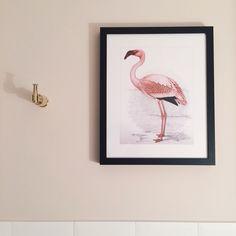 Quadro de flamingo no banheiro
