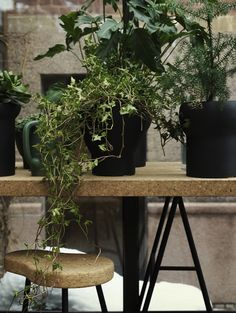 During Stockholm Design Week 2015 furniture giant Ikea showed his collaboration with London designer Ilse Crawford. The project was a range furniture and. Stockholm Design, Ikea Stockholm, Sinnerlig Ikea, Ikea Cork, Interior Ikea, Interior Design, Ikea 2015, Ikea New, Arquitetura