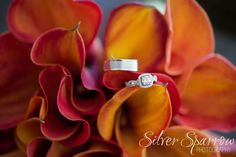 Fall inspired Bridal Bouquet - Wedding Rings - Photo by Silver Sparrow Photography  #ColoradoWeddingPhotographer #DenverWeddingPhotographer #CallaLilly #Orange #BridalBouquet #WeddingRing #WeddingDetails