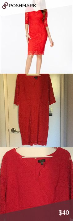 Red Lace Dress XL- NWT Sexy, red lace dress. Never been worn. Has some stretch, slimming & hugs your curves just right. Beautiful scalloped neckline. 3/4 length sleeves. Hemline hits just below my knees (I'm 5'6''). Great for a special occasion. 👌 👍🏻🙈💃🏻 Thalia Sodi Dresses Long Sleeve
