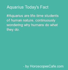 Aquarius Daily Fun Fact Deke says: Certainly true in my case but doesn't everyone? Aquarius Daily, Aquarius Sign, Aquarius Traits, Aquarius Quotes, Age Of Aquarius, Capricorn And Aquarius, Zodiac Quotes, Zodiac Facts, Frases