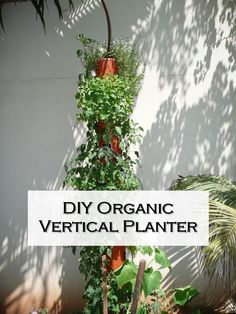 DIY Organic Vertical Planter - Using empty wall space in creative ways can make all the difference in your garden, and it can work in a small house or apartment too! If your outdoor space is lacking, this vertical gardening idea can take your garden to the next level.