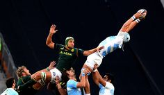 Juán Martín Leguizamón takes line out ball for the Pumas in the 4-nation Rugby Championship between South Africa (SpringBoks) and Argentina (Pumas). Springboks won 73-13