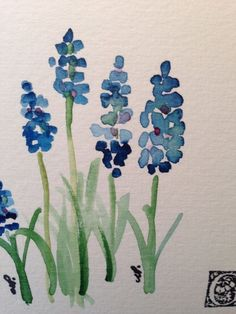 Grape Hyacinths Watercolor Card I by gardenblooms on Etsy #watercolorarts