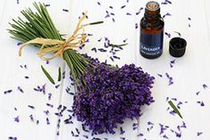12 Ways to Use Lavender Essential Oils For Heartburn, Essential Oils For Anxiety, Herbs For Depression, Lavender Benefits, Oil Benefits, Jojoba, Lavender Scent, Lavender Bouquet, Hair Growth Oil