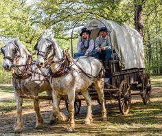 150th Anniversary - Shiloh - Shiloh National Military Park American Civil War, Native American Art, Shiloh Battlefield, Battle Of Shiloh, Harpers Ferry, World History, National Parks, Shots, Anniversary