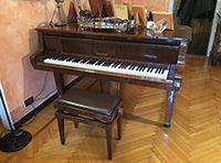 Petrof pianoforte a mezza coda