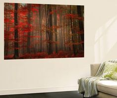 Enchanting Red Landscapes Wall Mural - 183 x 122 cm