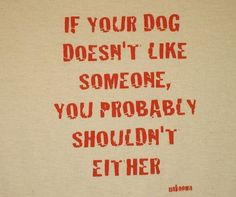 Truth about Dogs Like... Well I can't really tell if my dogs do or don't, because they always bark:)