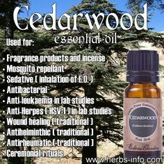 CedarWood essential oil benefits