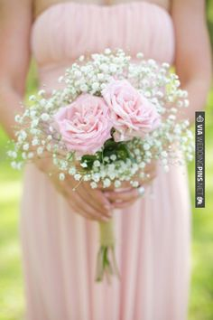 Baby's breath and rose.