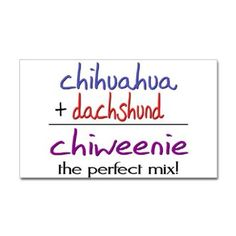 Amazon.com: Chiweenie PERFECT MIX Pets Sticker Rectangle by CafePress - White: Furniture & Decor