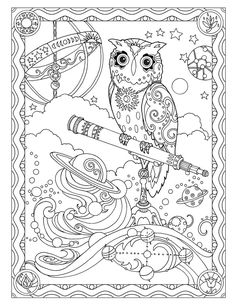 Creative Haven Owls Coloring Book By Marjorie Sarnat Astronomer