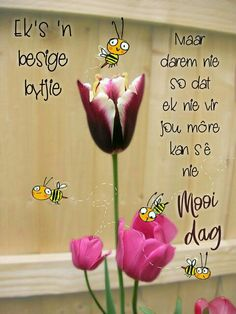 Good Morning Vietnam, Good Morning Good Night, Good Morning Wishes, Day Wishes, Good Morning Quotes, Cute Quotes, Funny Quotes, Nice Sayings, Lekker Dag