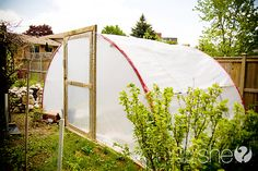 Turn a Trampoline Into a Greenhouse! Love this!!