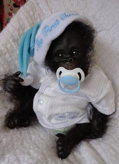 OOAK Reborn Monkey Orangutan Baby Boy Art Doll Gorilla Original Newborn | eBay