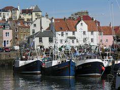 Pittenweem, Fife, Scotland THATS MY GRANDMAS HOUSE. The white one.