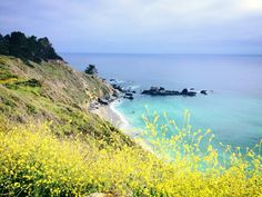 Pacific Coast Highway-- best road trip ever!