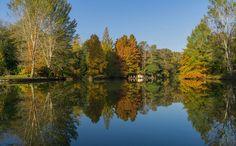 autumn reflections by lizardofthe wizard on 500px