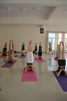 iyengar yoga teacher training rishikesh  http://www.indianyogaassociation.com/inquiry_form_4.html
