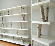 Estantes, troncos de un árbol talado