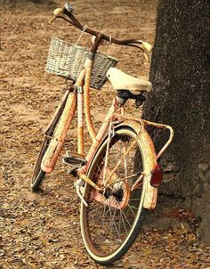 Love old bikes with baskets. I am too afraid to bike in the city though Vintage Cycles, Vintage Bikes, Fall Clip Art, New Bicycle, Old Bikes, Wheelbarrow, Rustic, Cool Stuff, Bike Rides
