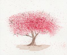 cherry blossom - watercolour