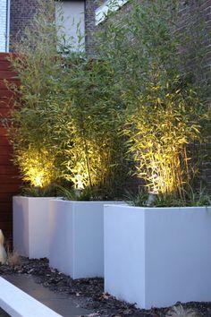 EVolution Comfort Line Garden Spotlight Complete Set incl. Outdoor Garden Lighting, Landscape Lighting, Outdoor Gardens, Terrace Garden, Garden Planters, Backyard Paradise, Back Gardens, Backyard Landscaping, Garden Inspiration