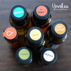 Don't be caught unprepared! Confidently maintain your family's health with these favorite essential oils for winter wellness. | Yankee Homestead