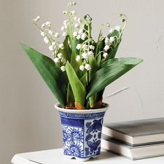 Smithsonian Lily of the Valley Arrangement