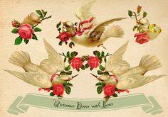 Colombe con Rose vittoriane vintage  Immagini di ilFioredOro, €3.25