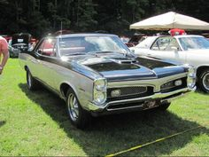 Displaying 1 - 15 of 242 total results for classic Pontiac GTO Vehicles for Sale. 67 Pontiac Gto, Pontiac Gto For Sale, My Dream Car, Dream Cars, Vintage Cars, Antique Cars, 1967 Gto, Amc Javelin, Classy Cars